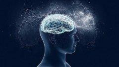 """浙大发布""""双脑计划"""" 脑科学与AI研究会聚融合"""