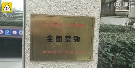"""【长城微评】""""答应不养狗才能买房"""",可取吗?"""