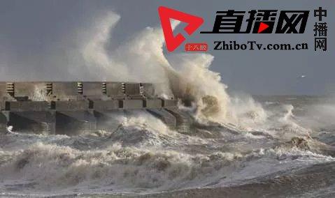 """暴雨+风暴潮!超强台风""""利奇马""""逼近,河北应急响应启动"""
